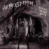 Night in the Ruts - Aerosmith