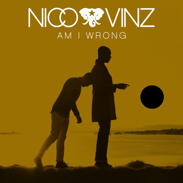 Cover art for Am I Wrong