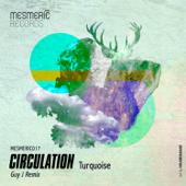 Turquoise (Guy J Remix)