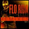 Wild Ones feat Sia Remixes Pt 2 EP