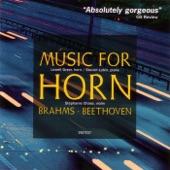 Horn Sonata in F Major: II. Andante espressivo artwork