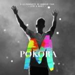 M. Pokora - A nos actes manqués (live bercy 2012)