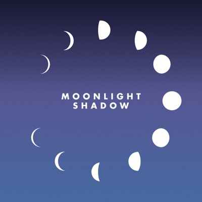 Moonlight Shadow (Remix) - Single - Maggie Reilly