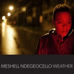 Meshell Ndegeocello - Objects in Mirror Are Closer Than They Appear