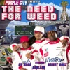 The Need For Weed, Purple City
