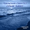Relaxing Sounds of Nature OCEANS