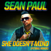 Sean Paul - She Doesn't Mind (Pitbull Remix) artwork