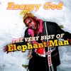 Energy God - The Very Best of Elephant Man ジャケット写真