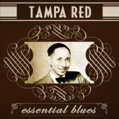It Hurts Me Too Tampa Red