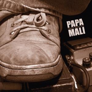 Papa Mali featuring Big Chief Monk Boudreaux - Sugarland