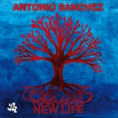 Antonio Sanchez - Nighttime Story