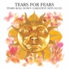 Tears Roll Down (Greatest Hits 82-92), Tears for Fears