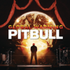 Feel This Moment (feat. Christina Aguilera) - Pitbull