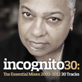 Incognito 30: The Essential Mixes (2003-2012)