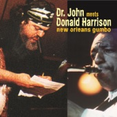 Donald Harrison Jr. - You Ain't so Such a Much