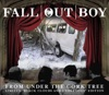 From Under the Cork Tree Limited Black Clouds and Underdogs Edition EP