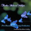 Skater's Waltz - Pro Musica Symphony Orchestra & Robert Ashley