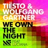 We Own the Night (feat. Luciana) [Radio Edit] - Single