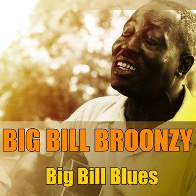 Big Bill Broonzy: Big Bill Blues - Big Bill Broonzy