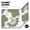 Loveless Love, Harry James