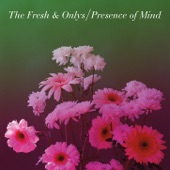 The Fresh & Onlys - Presence Of Mind