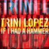 Trini Lopez - If I Had A Hammer
