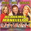 Academia Manelelor 1 (Academy of Manele Music No.1), Various Artists