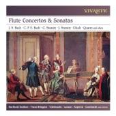 Barthold Kuijken, Bob Van Asperen - Sonata in B-flat Major, Wq 161:2. I. Allegro