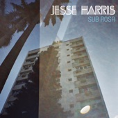 Jesse Harris - Rocking Chairs (feat. Norah Jones)