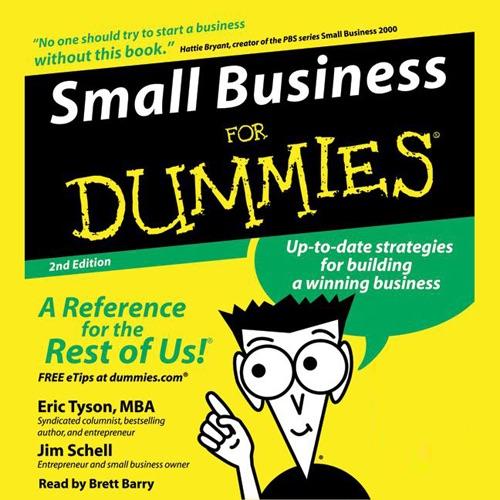 Business Plans Kit For Dummies Pdf Download