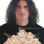 Carlos Vives - Déjame Entrar