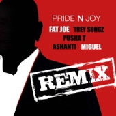 Pride N Joy Remix (feat. Trey Songz, Pusha T, Ashanti & Miguel) - Single