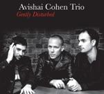 Avishai Cohen Trio - Chutzpan