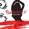 Buckcherry - Crazy Bitch Song Lyrics