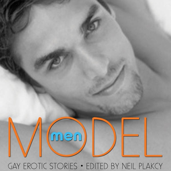 Gay male erotic stories