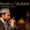 Rooh e Shabbir Single