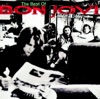 Crossroad - The Best of Bon Jovi, Bon Jovi