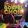 Many Rivers To Cross (Swing Down) - Soweto Gospel Choir
