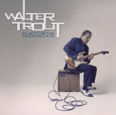 Walter Trout - Never Knew You Well