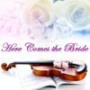 Here Comes the Bride Strings - Here Comes the Bride artwork