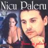 Nicu Paleru - Beau si plang artwork