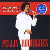 Pellin Rodriguez - Amor por Ti