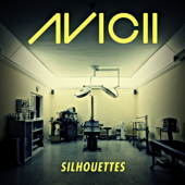 Silhouettes (Radio Edit)