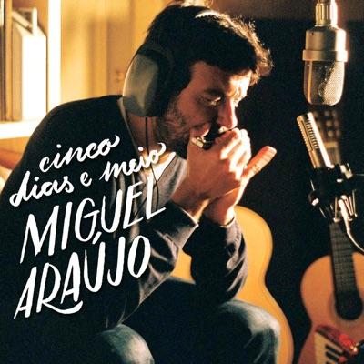 Cinco Dias e Meio - Miguel Araújo