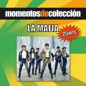 Momentos de Colécción Mp3 Download