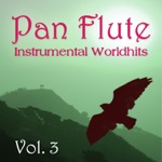 Pan Flute - Killing Me Softly (Instrumental)
