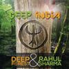 Deep Forest & Rahul Sharma - Deep India  artwork
