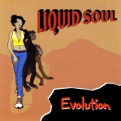 Liquid Soul - Mean Machine