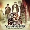 You Got Me Remix feat Fabolous Baby Bash Single
