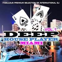 Various Artists - Deep House Player Miami, Vol. 1 (Fabulous Premium Selection of International DJ)